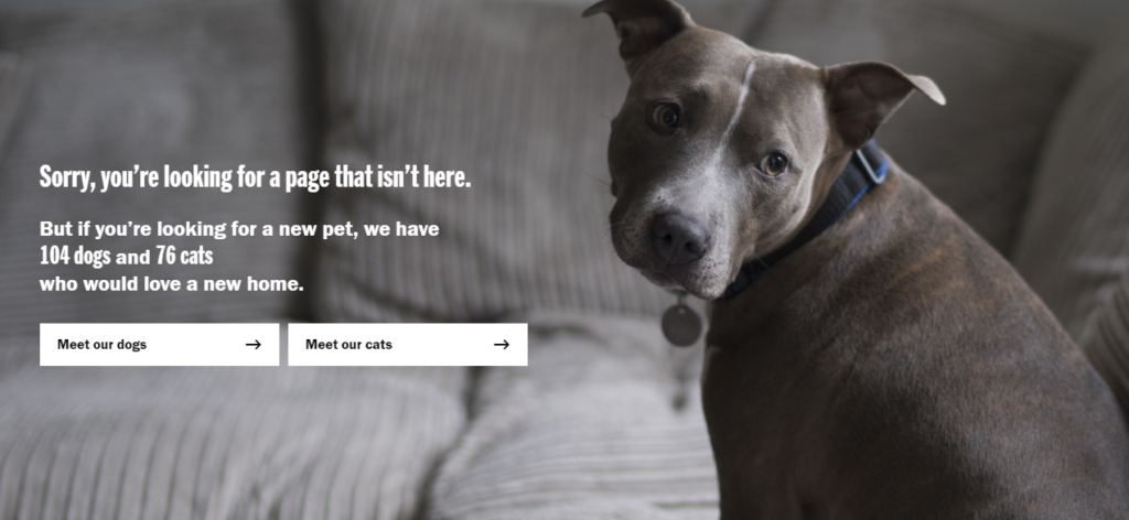 Battersea Dogs & Cats Home 404 error page