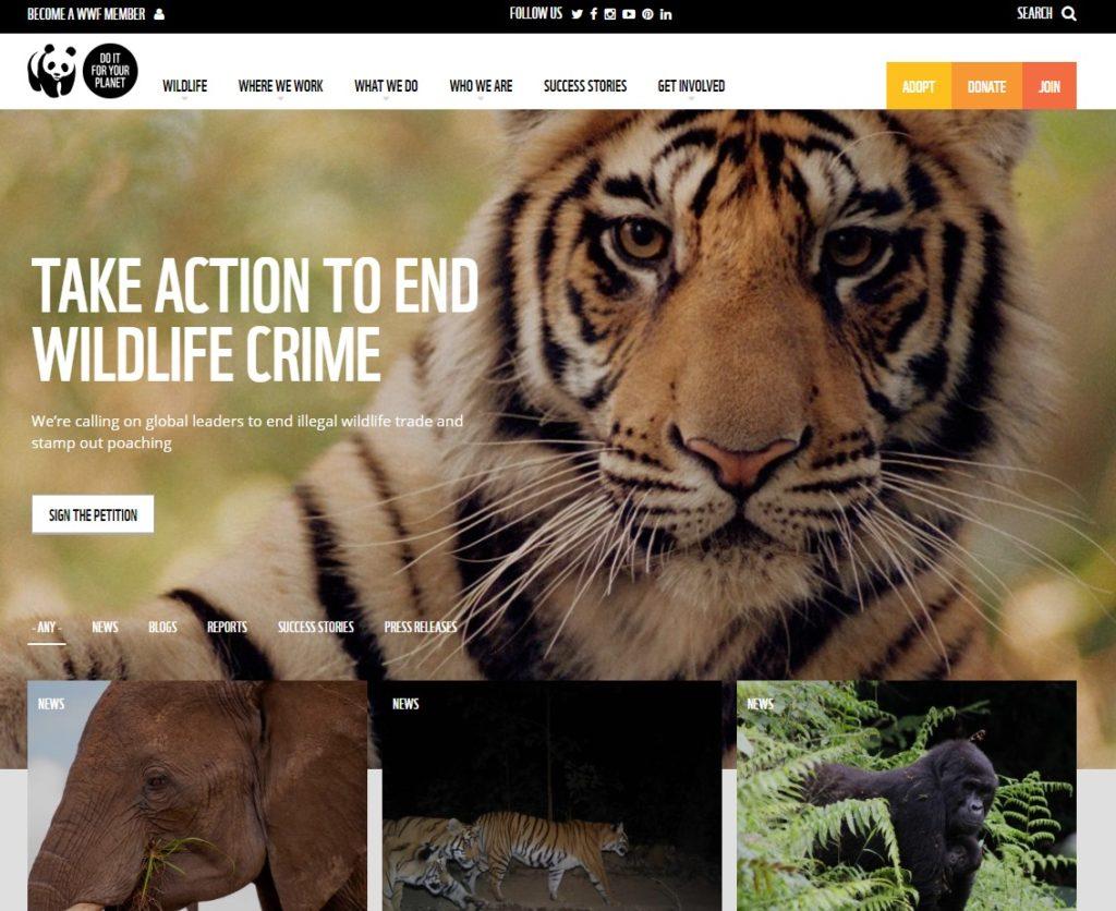 WWF charity web design homepage